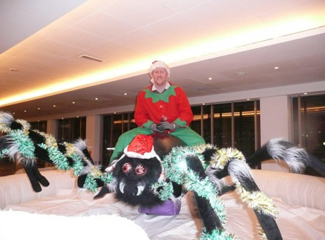 Rodeo Christmas Spider